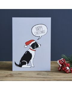 Springer Spaniel Black & White - Sweet William Christmas Card