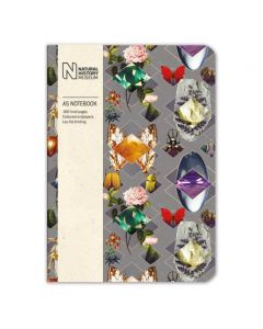 Museums and Galleries Natural History Museum A5 Beetles and Jewels Notebook
