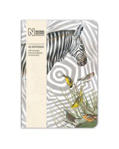 Museums and Galleries Natural History Museum A5 Zebra Notebook