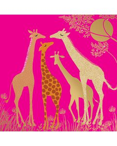 Sara Miller London - Giraffes - SAM30