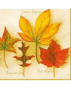 Paper Napkins for Decoupage, 4 Single Lunch Size Paper Napkins, Autumn Leaves Cream