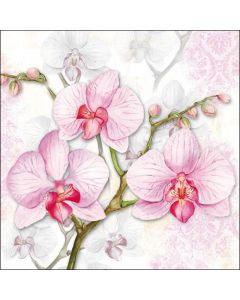 Ambiente Paper Napkins 3-ply Lunch Orchids