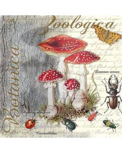 Paper Napkins for Decoupage, 4 Single Lunch Size Paper Napkins, Fly Agaric Beetle