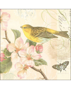 Paper Napkins for Decoupage, 4 Single Lunch Size Paper Napkins, Bird and Blossom Cream
