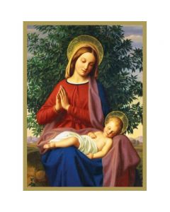 Madonna and Child  #CMBX407 - Pack of 8 Cards