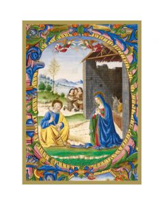 Nativity  #CMBX412 - Pack of 8 Cards