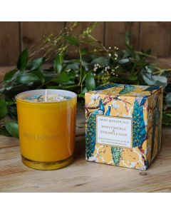 Irish Botanicals Candle Honeysuckle and Pineapple Sage