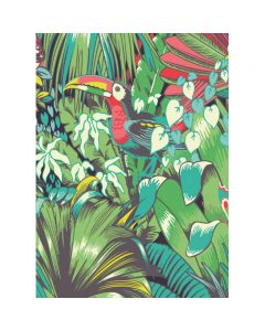 Museums and Galleries Matthew Williamson Greeting Card Design Collection Toucan
