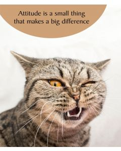 Portfolio Cat Tonic Cat Card Attitude is a Small Thing That Makes a Big Difference