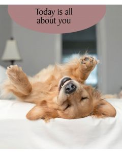 Portfolio Dog Tastic Dog Card Don't Worry You're Seriously Young in Dog Years!