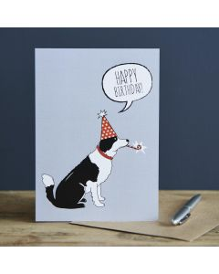 Sweet William Birthday Card Border Collie