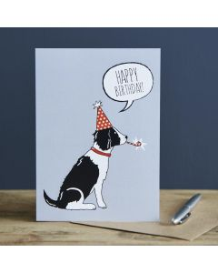 Sweet William Birthday Card Springer Spaniel Black