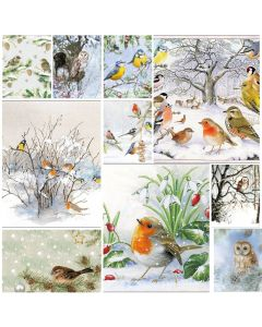 Winter Feathered Friends - Mixed pack of 20  Napkins for Decoupage